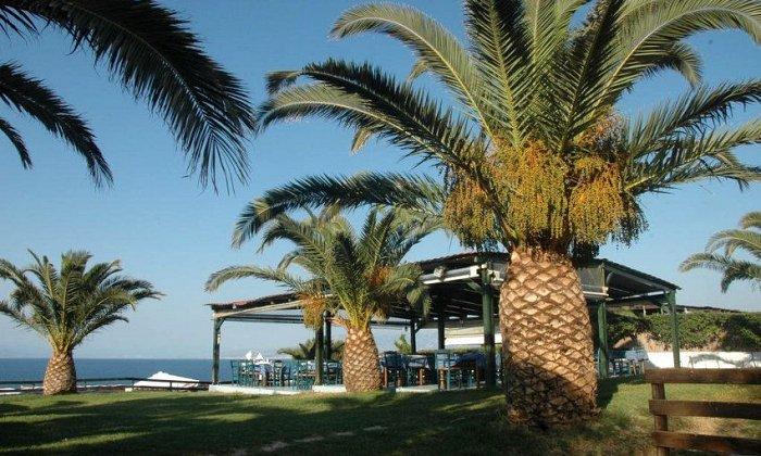 Προσφορά από 202€ για 3 διανυκτερεύσεις με Ημιδιατροφή για 2 ενήλικες και 2 παιδιά έως 12 ετών Ισχύει από 1/09 έως 25/09 στο Koralli Beach Hotel εικόνα